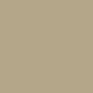Pequea Tan Desoto Series Shed Paint Sample