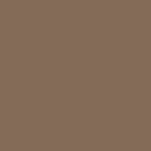 Quaker Tan Desoto Series Shed Paint Sample